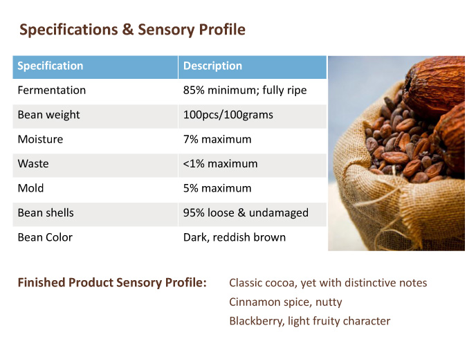 Sensory Profile